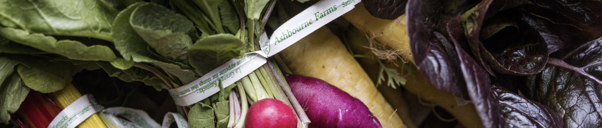 Farm Happenings at Ashbourne Farms