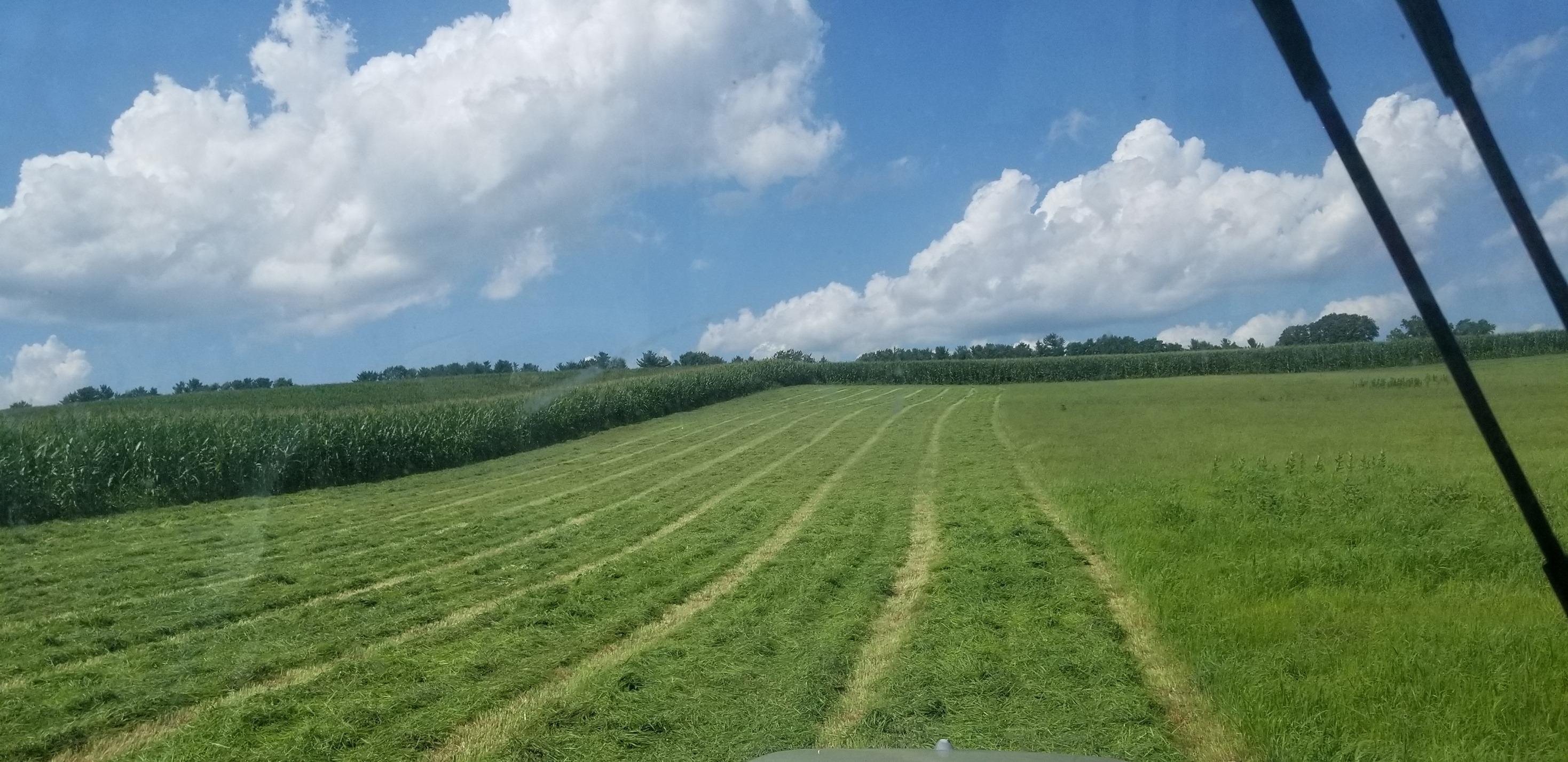 Albright Farm