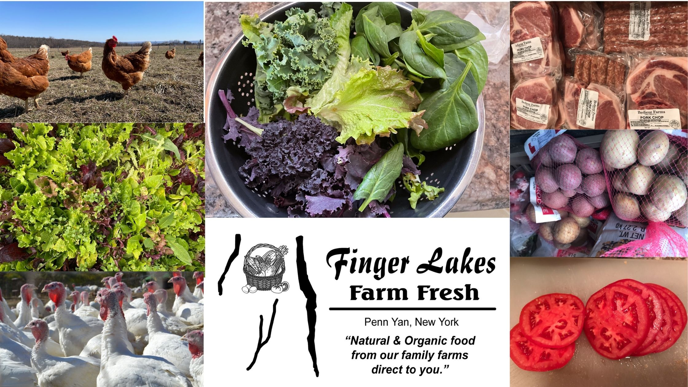Bedient Farms; Finger Lakes Farm Fresh