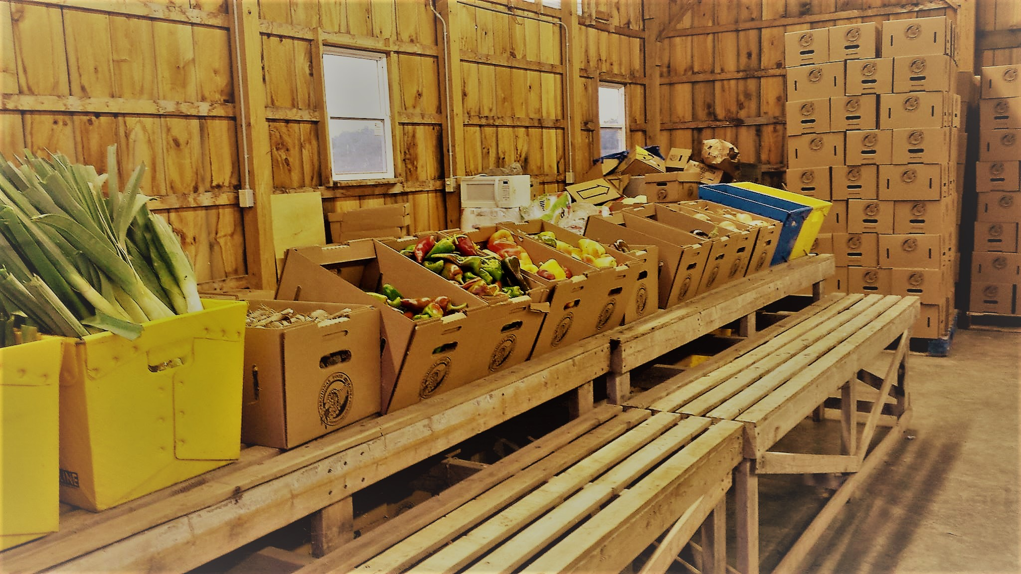 Regional Food Bank Home Delivery