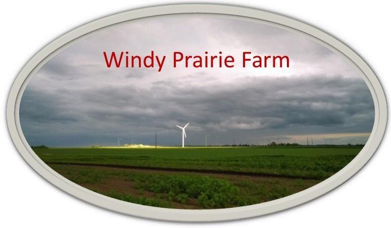 Windy Prairie Farm