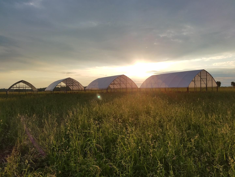 Farm Happenings for This Week!
