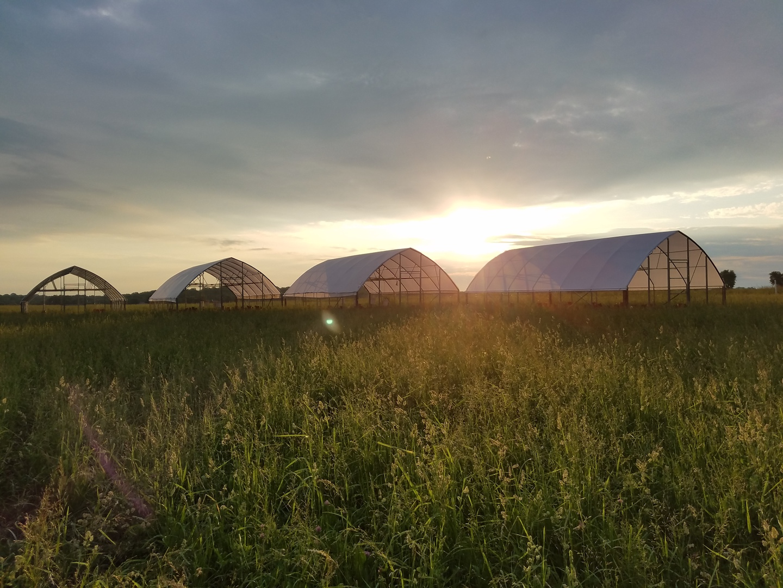 Farm Happenings for August 9, 2019