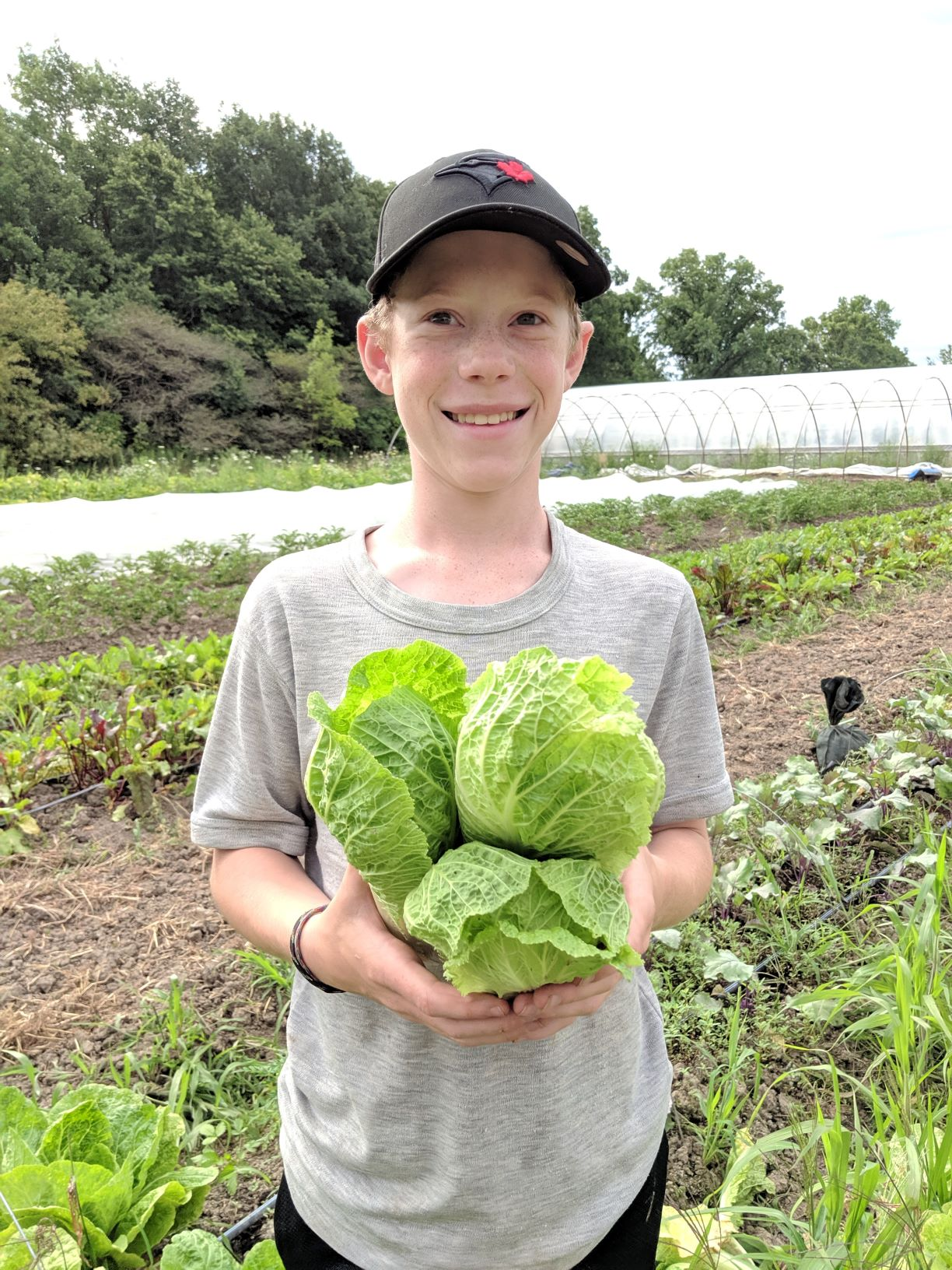 Veggie share - Week 10