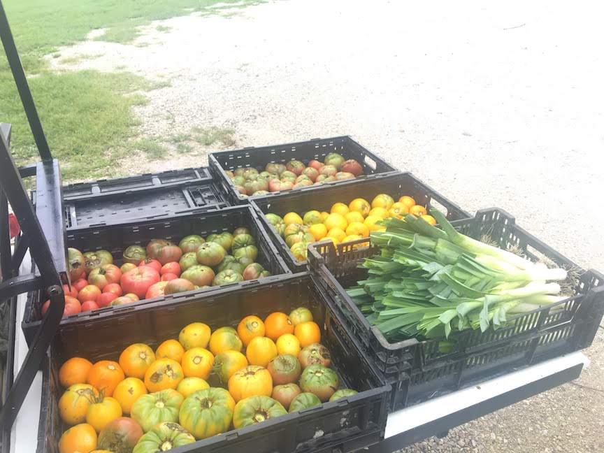 Why is Millsap Farm Organic?  September 10, 2019