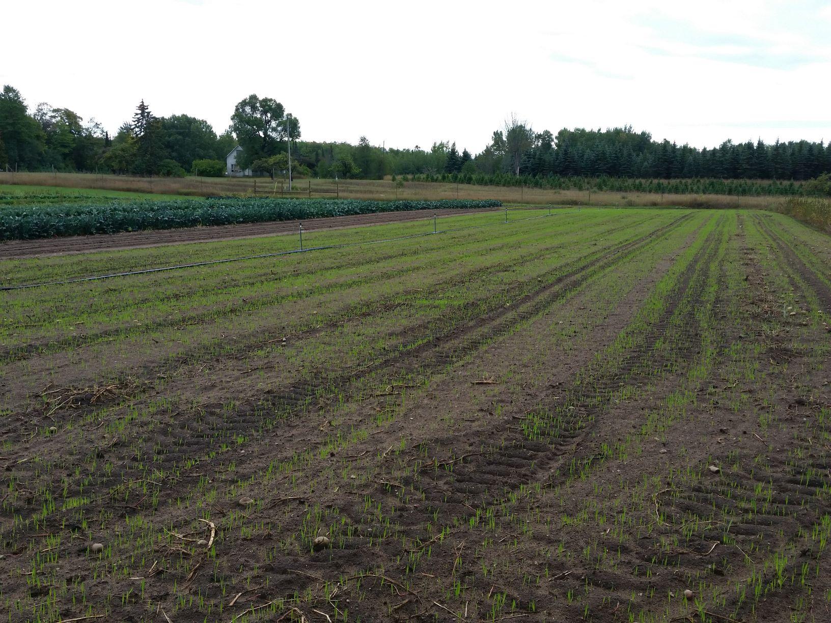 Farm Happenings for September 19 & 20, 2019