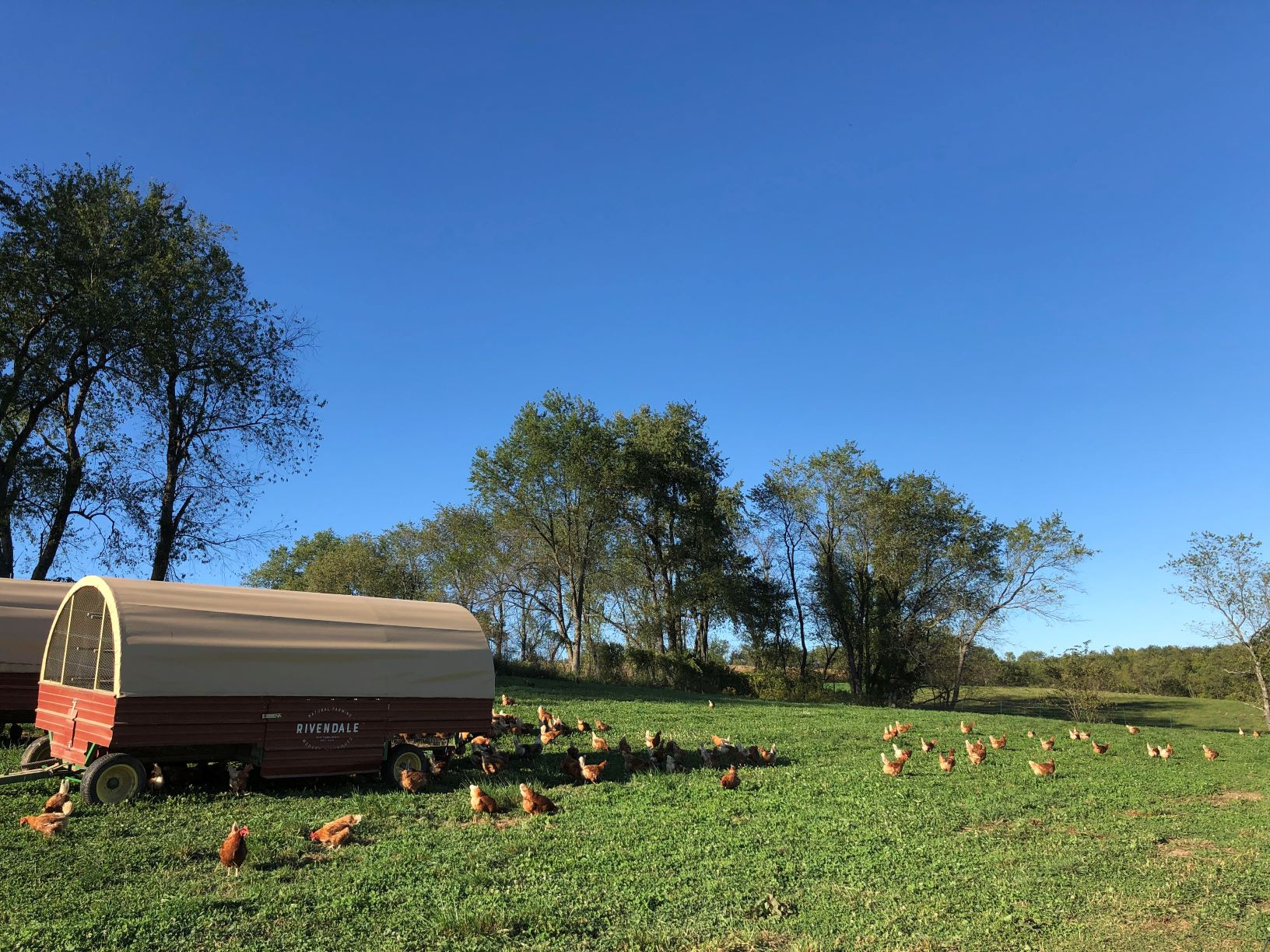 Farm Happenings for September 24, 2019 (week 16)