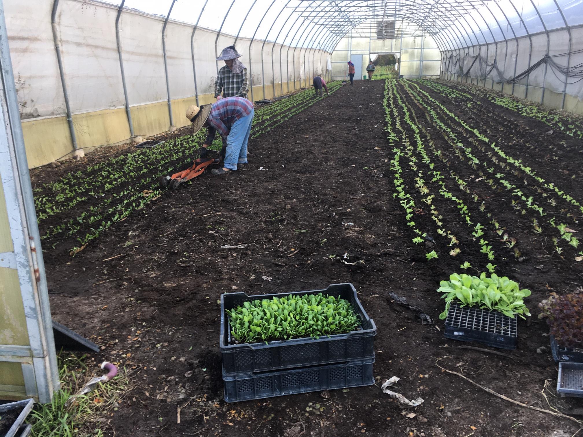 Farm Happenings for October 16, 2019