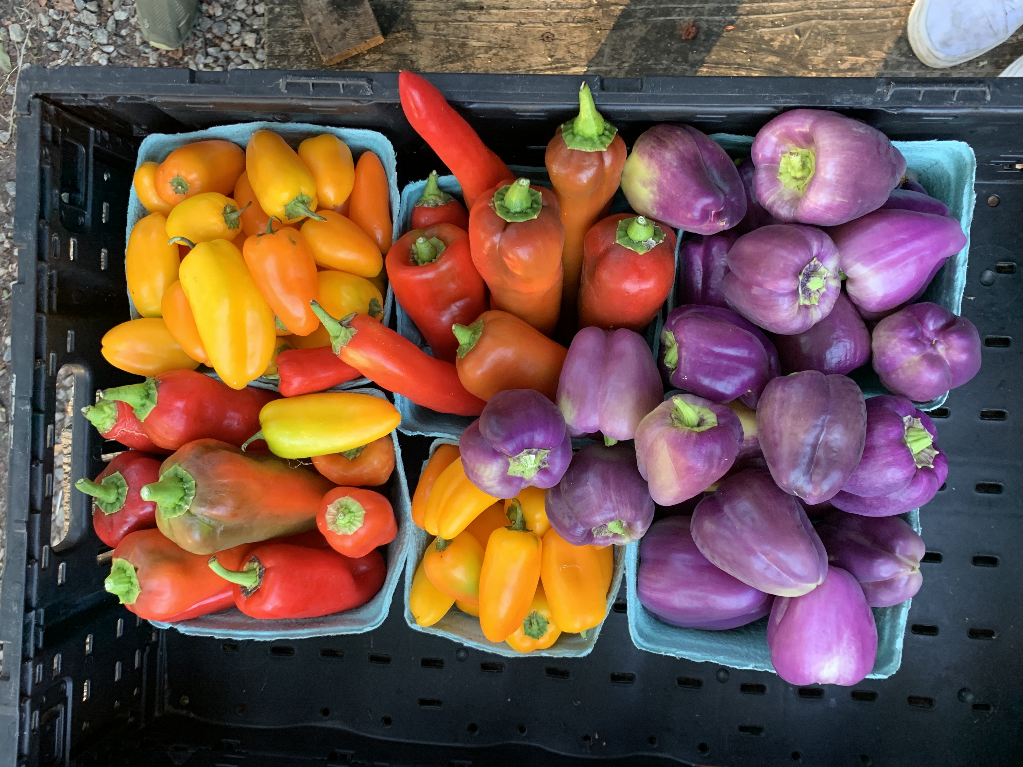 Farm Happenings for third week of October
