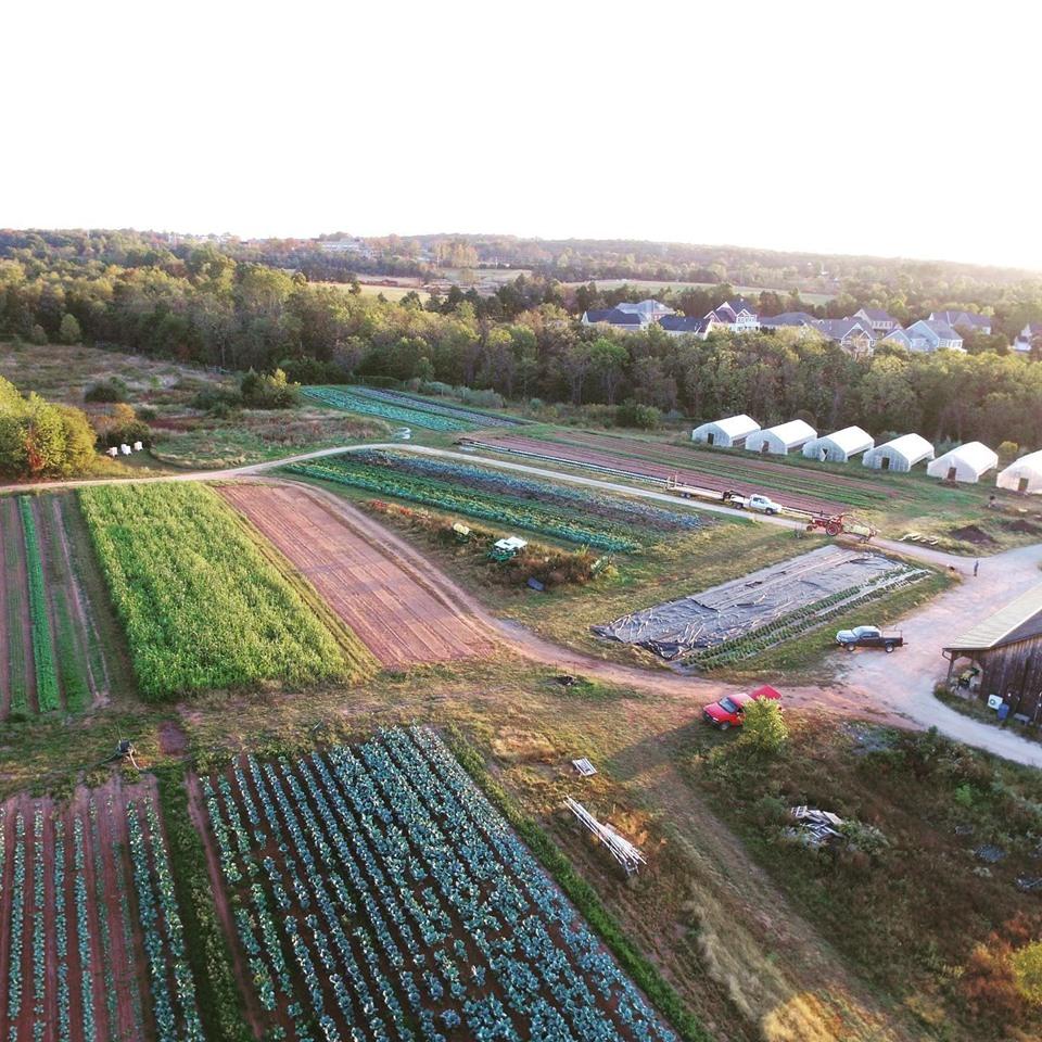 Willowsford Farm - At Your Doorstep!