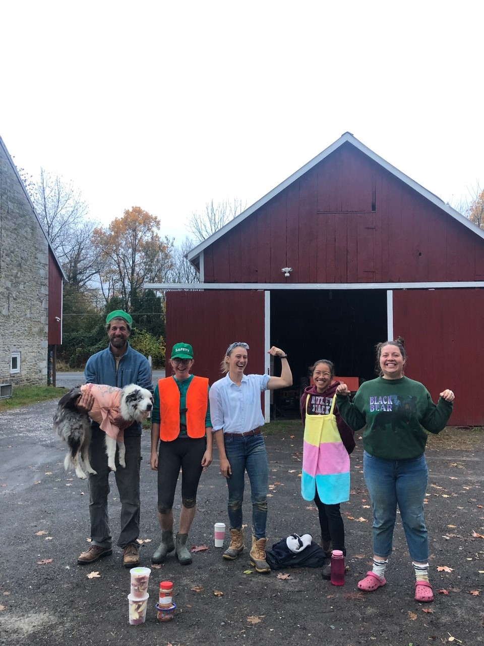 Friday CSA: Dickinson College Farm Field Notes for Week of November 4th