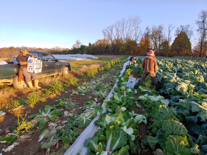 Farm Happenings for November 12, 2019