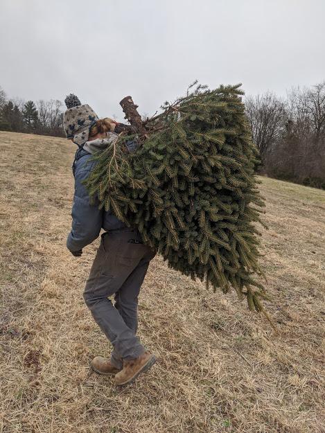 Farm Happenings for December 11, 2019