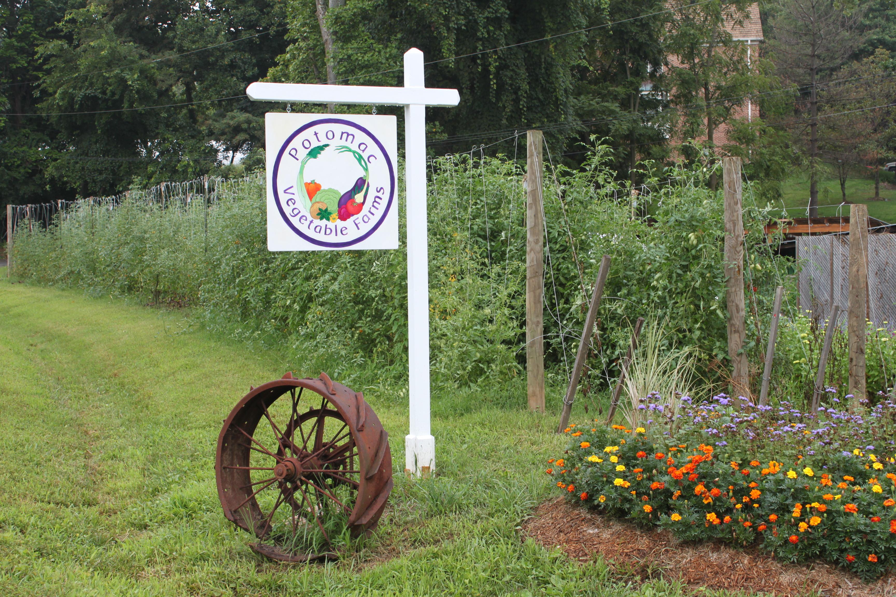 Welcome to Potomac Vegetable Farms!
