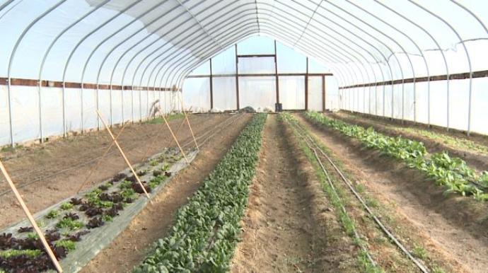 Farm Happenings for February 7, 2020