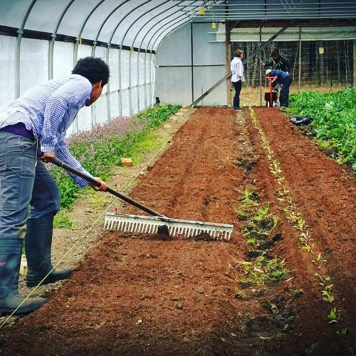 Farm Happenings for April 2, 2020