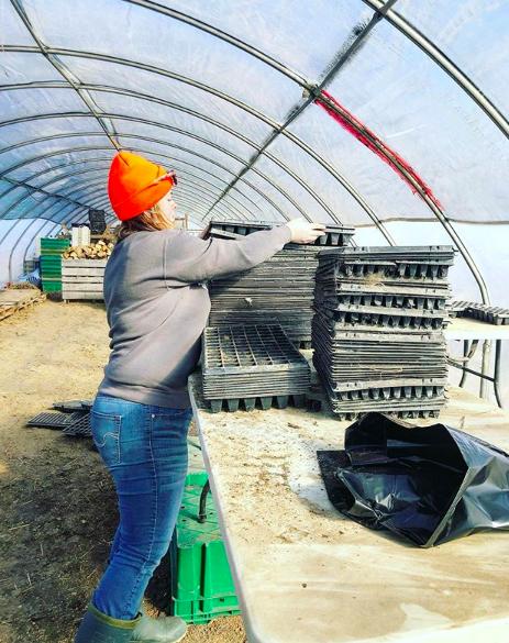 Week 11 of 14 Winter/Spring 2020 Vegetable Share: Cooper's CSA Farm Happenings