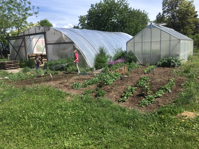 Farm Happenings for May 19, 2020