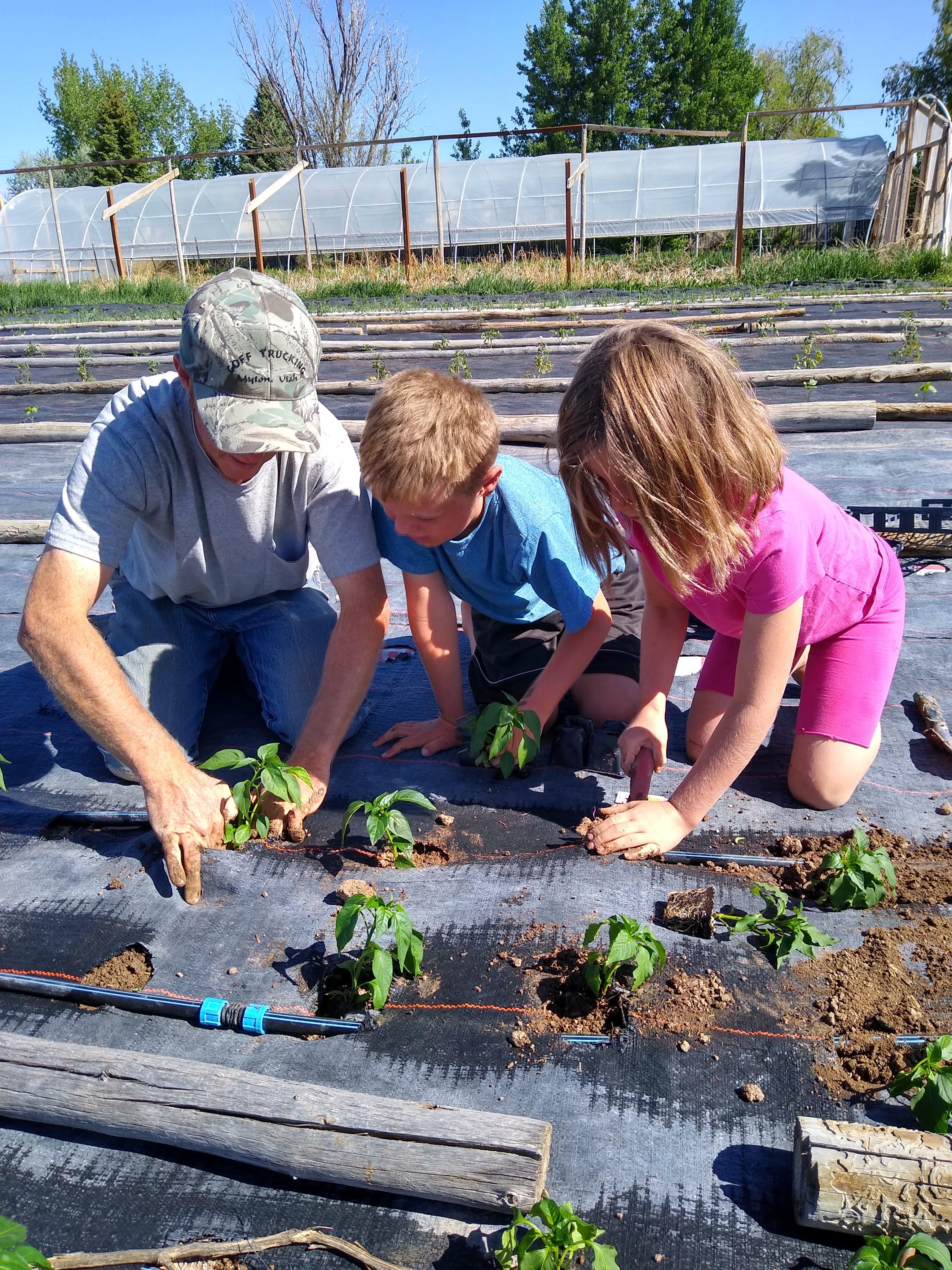 Spring Week #4: Planting, and planting, and planting, Oh My!