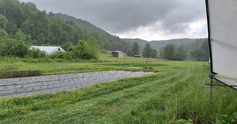 Farm Happenings for June 23, 2020