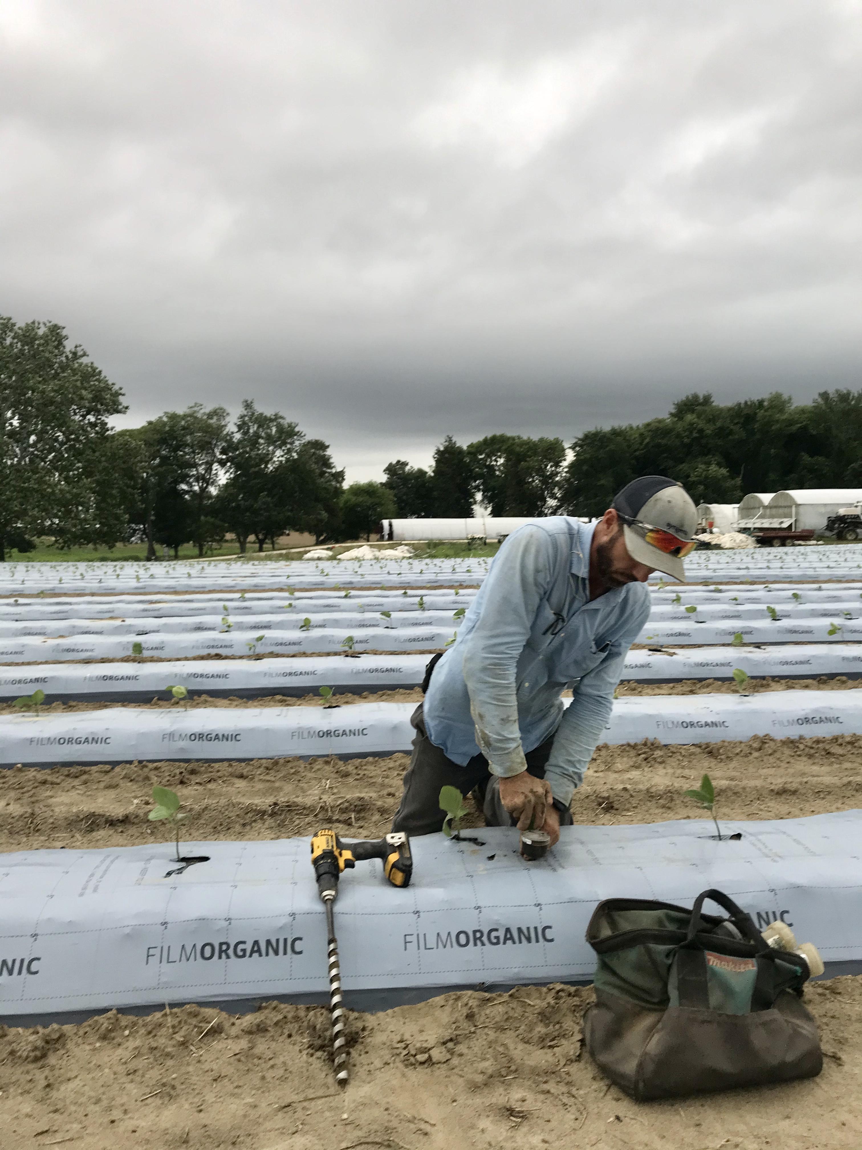 Farm Happenings for July 13, 2020