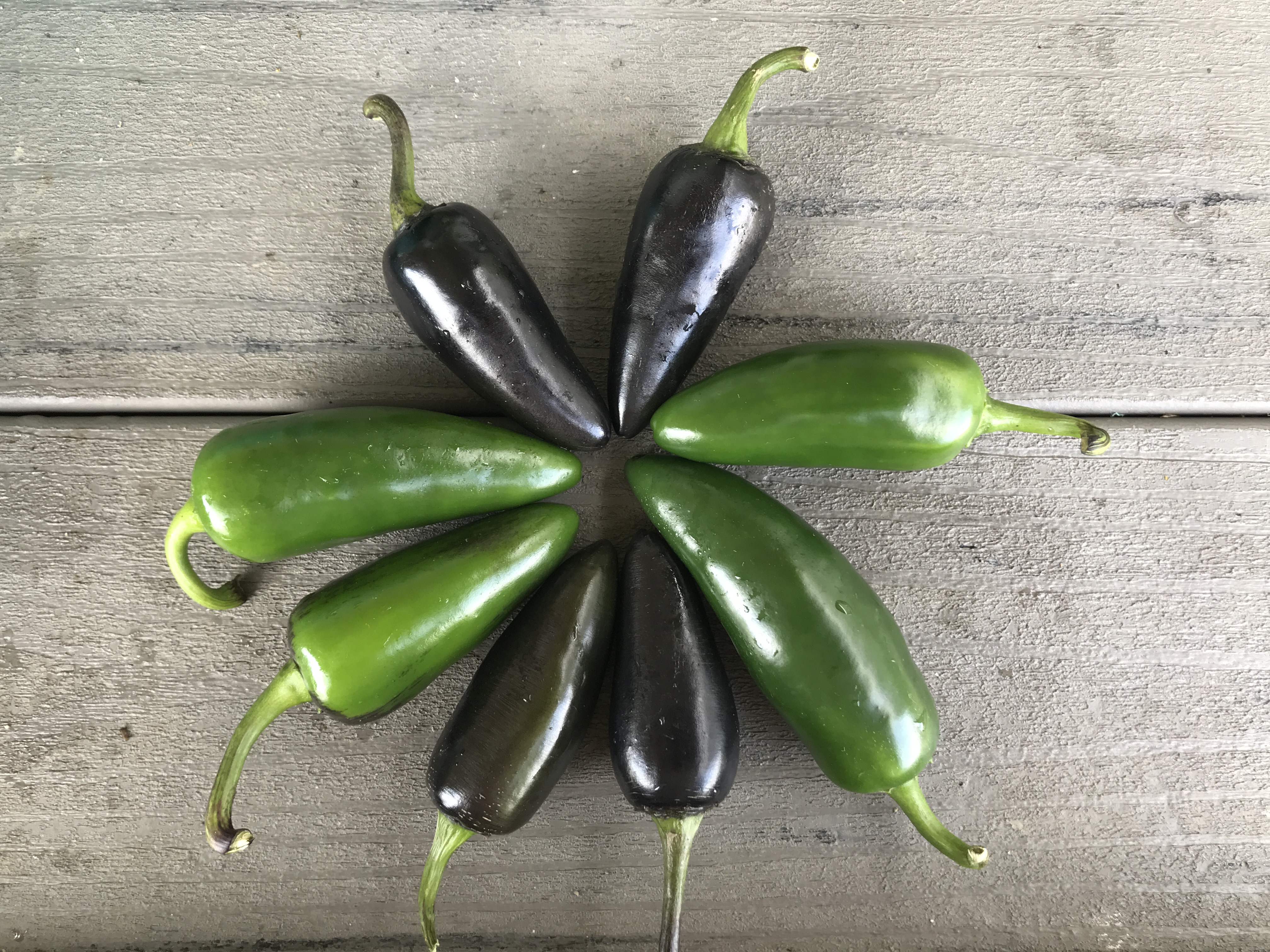 Six Ideas to Use Hot Peppers