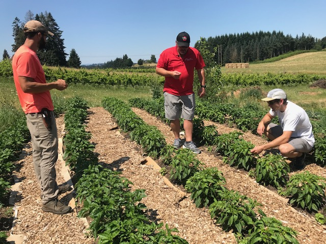 Farm Happenings for July 30, 2020