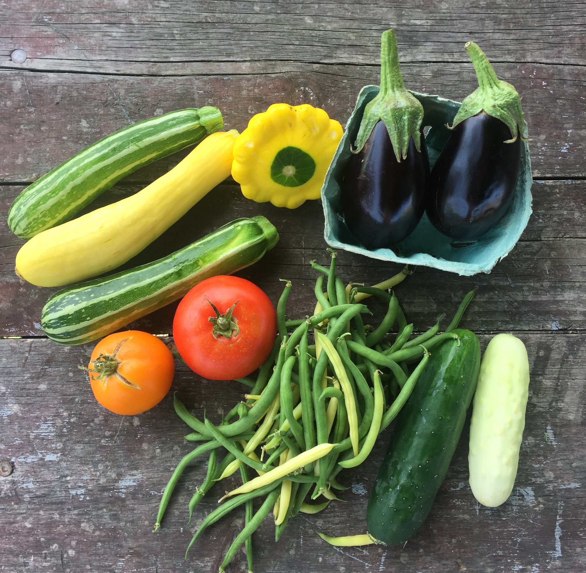 Common Roots Urban Farm CSA Newsletter # 8