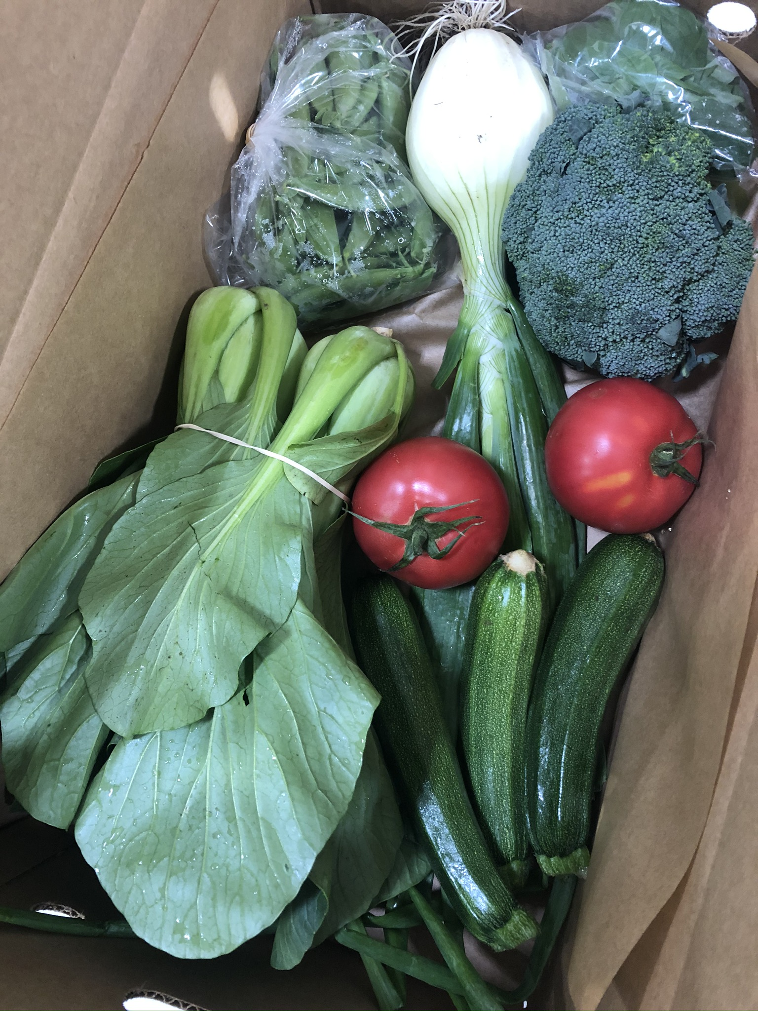 Extra Produce Boxes Available This Week!