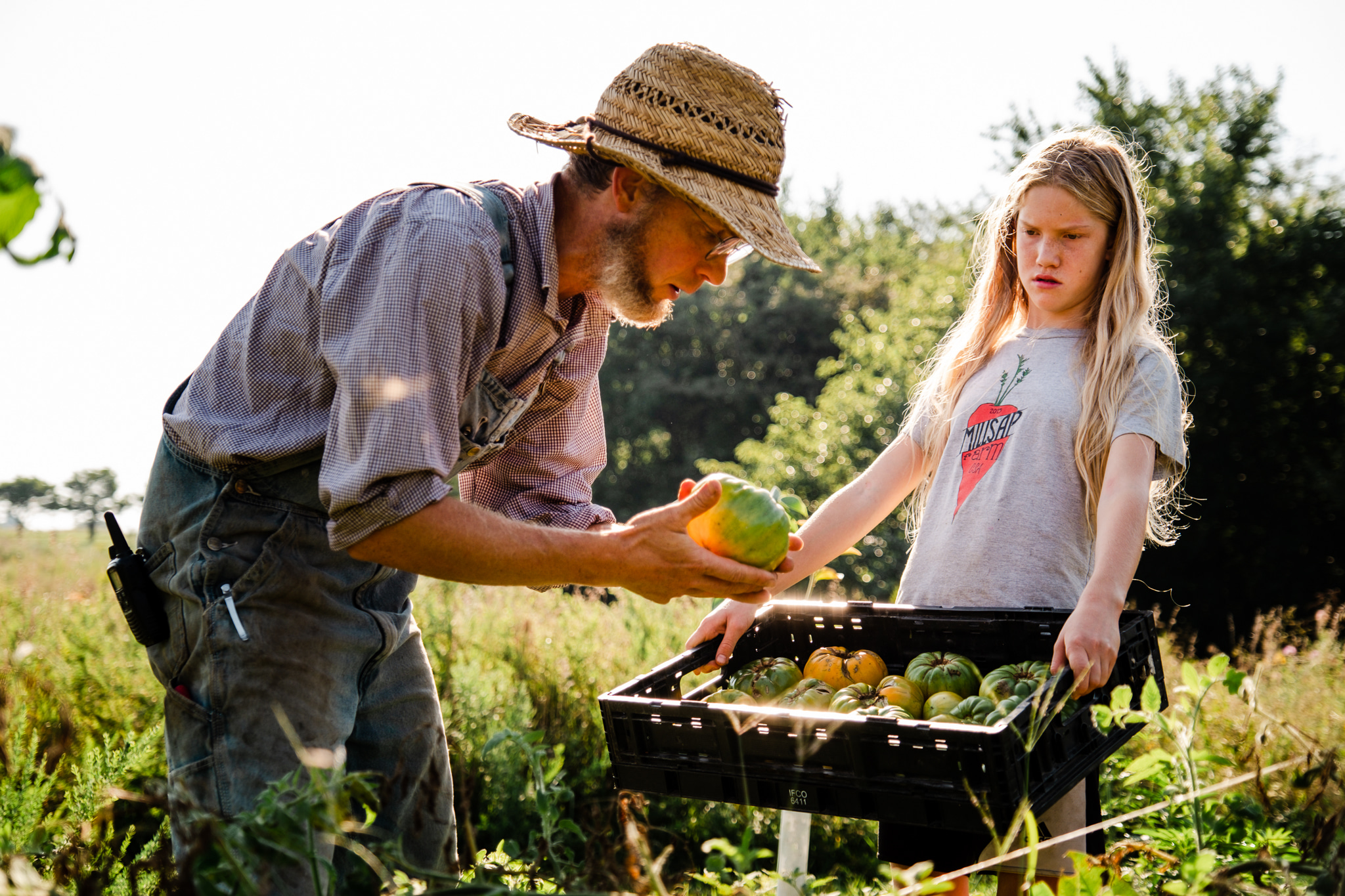 Planting For The Future, Harvesting For The Present, Farm Happenings for August 11, 2020