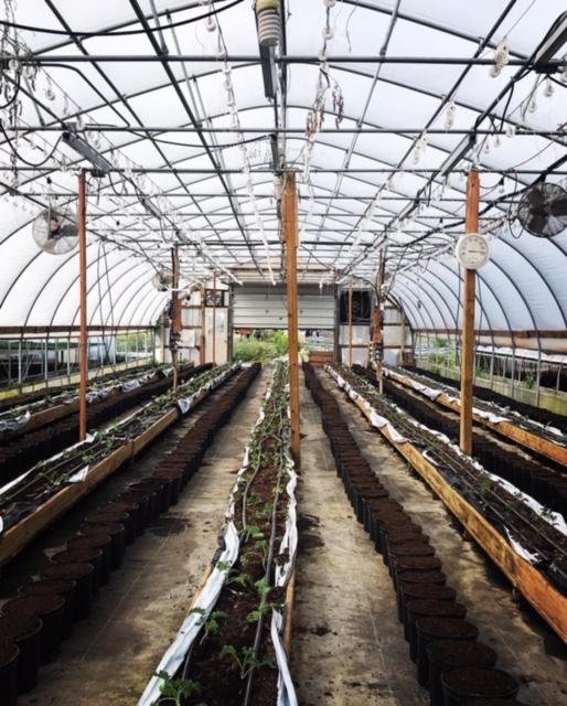 Farm Happenings for September 5, 2020