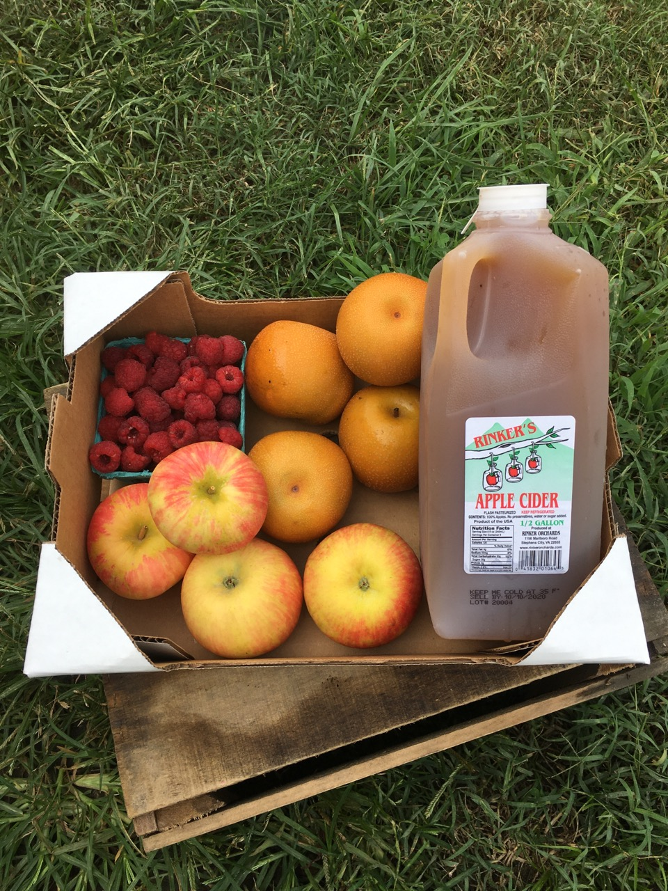 Welcome to our First Week of the Fall Farm Share Season!