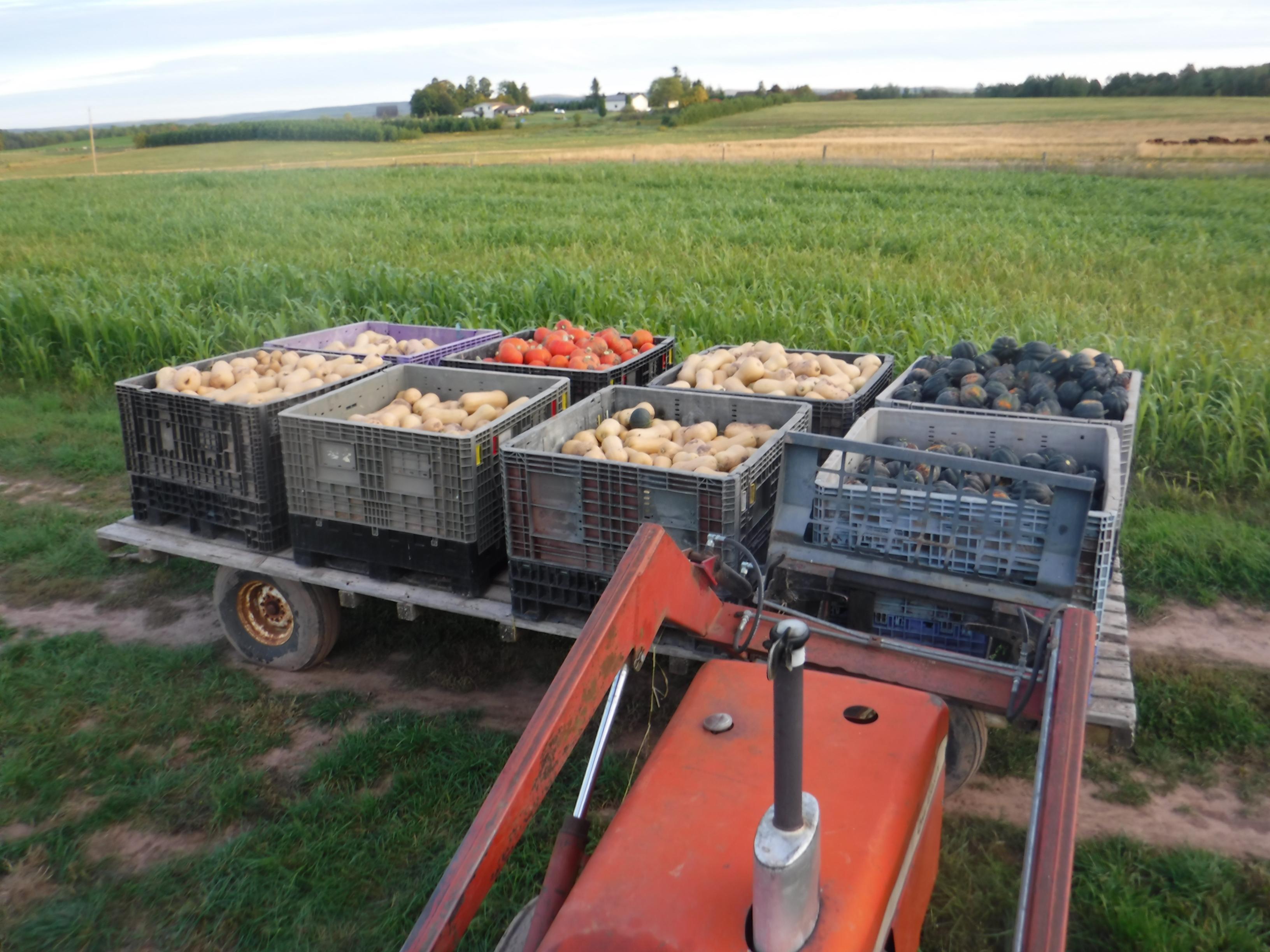 Sept 18 Farm Happenings