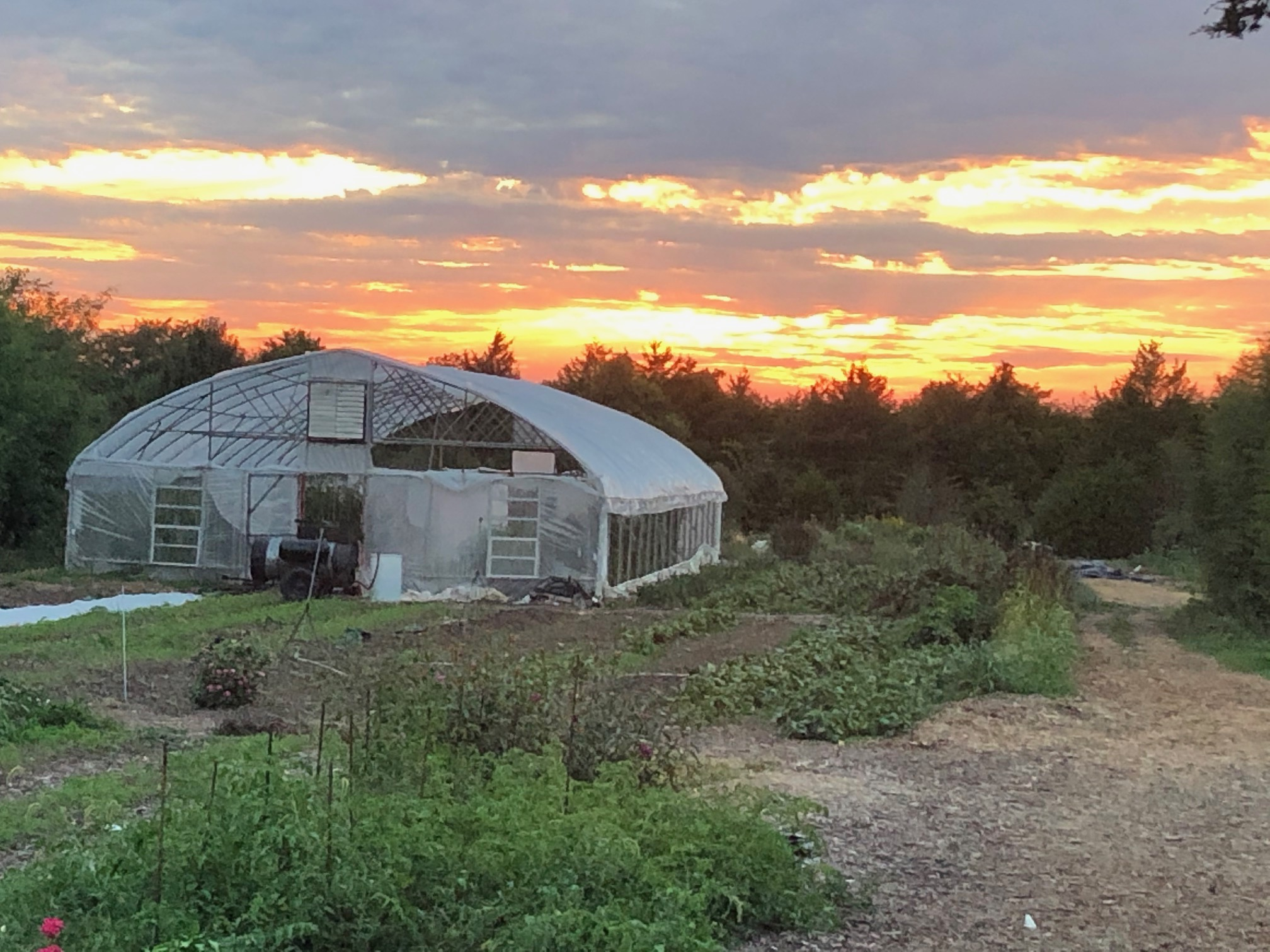 Farm Happenings for September 22, 2020