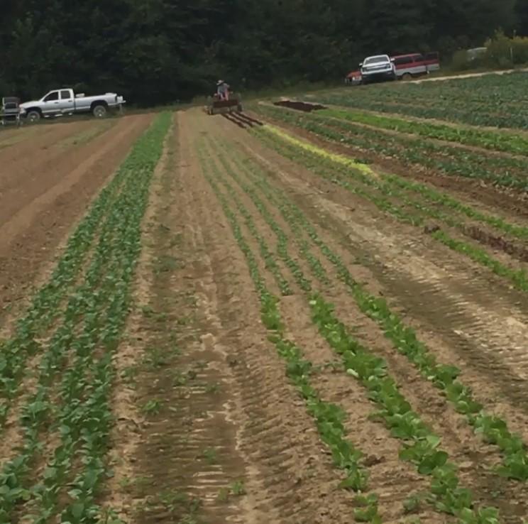 Farm Happenings for September 29, 2020