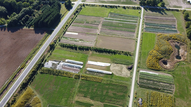 Farm Happenings for October 1, 2020