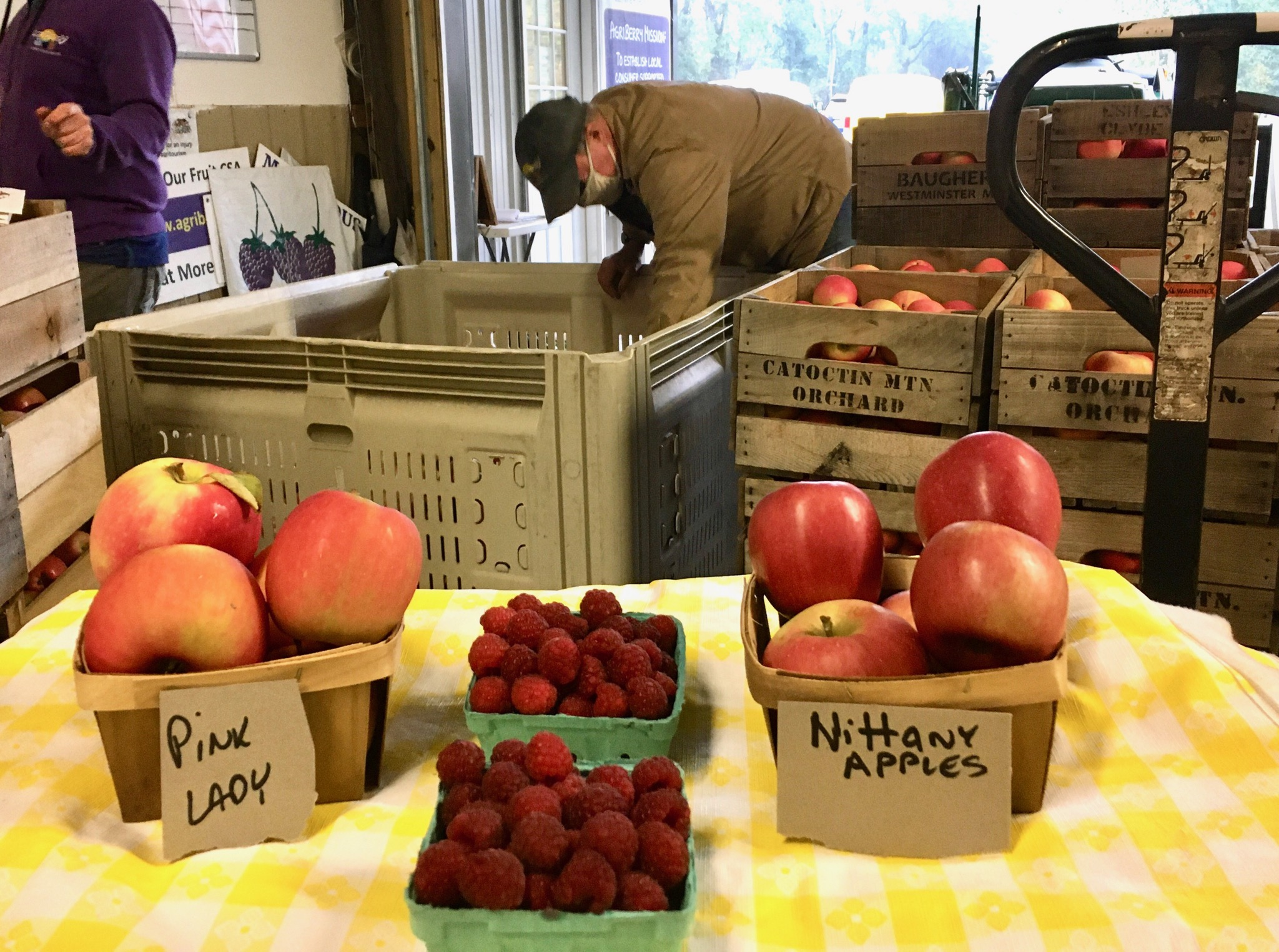 Second to last week of our Fall Farm Share... Holiday Farm Share is on the horizon!