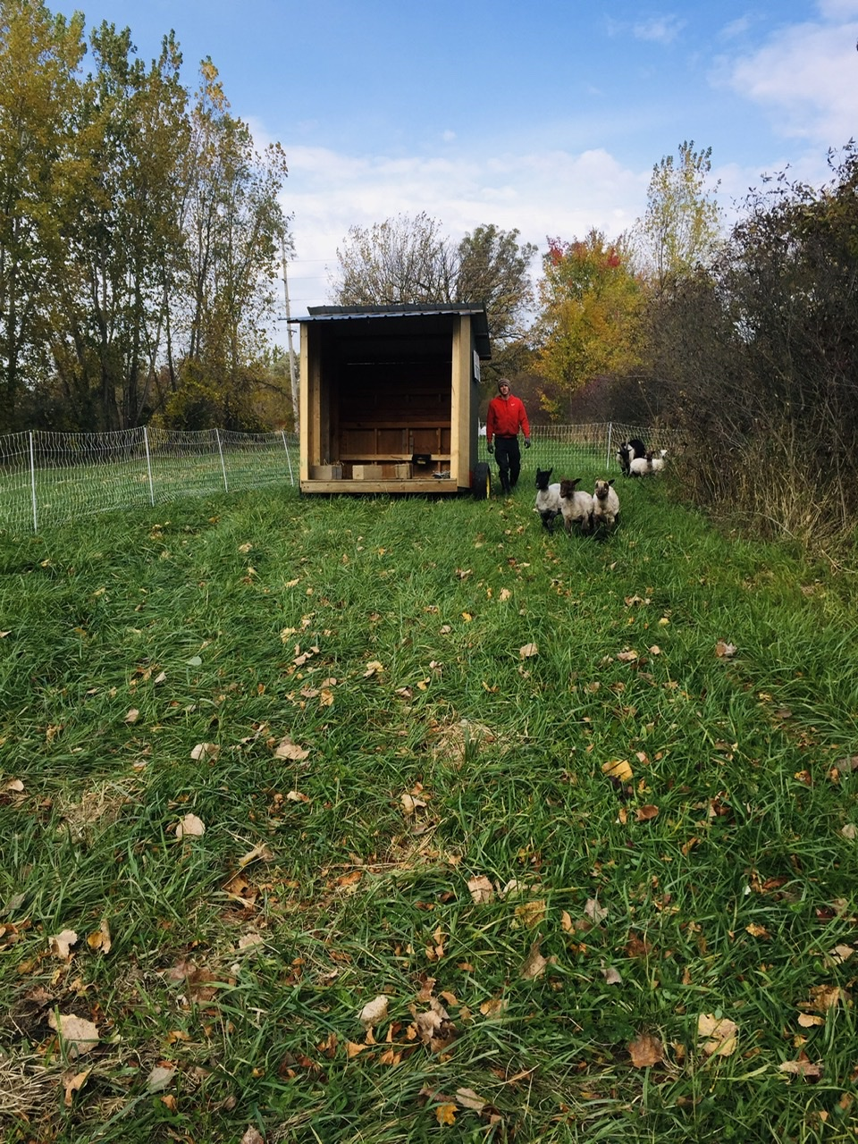 Farm Happenings for October 21, 2020