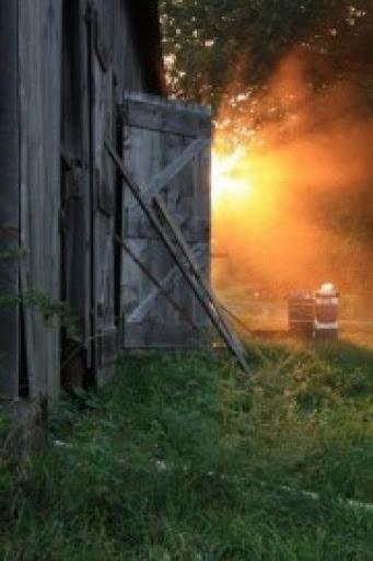 Oxen Hill Farm Summer 2020 CSA Season Week 18; the final week of Summer (week of October 19)