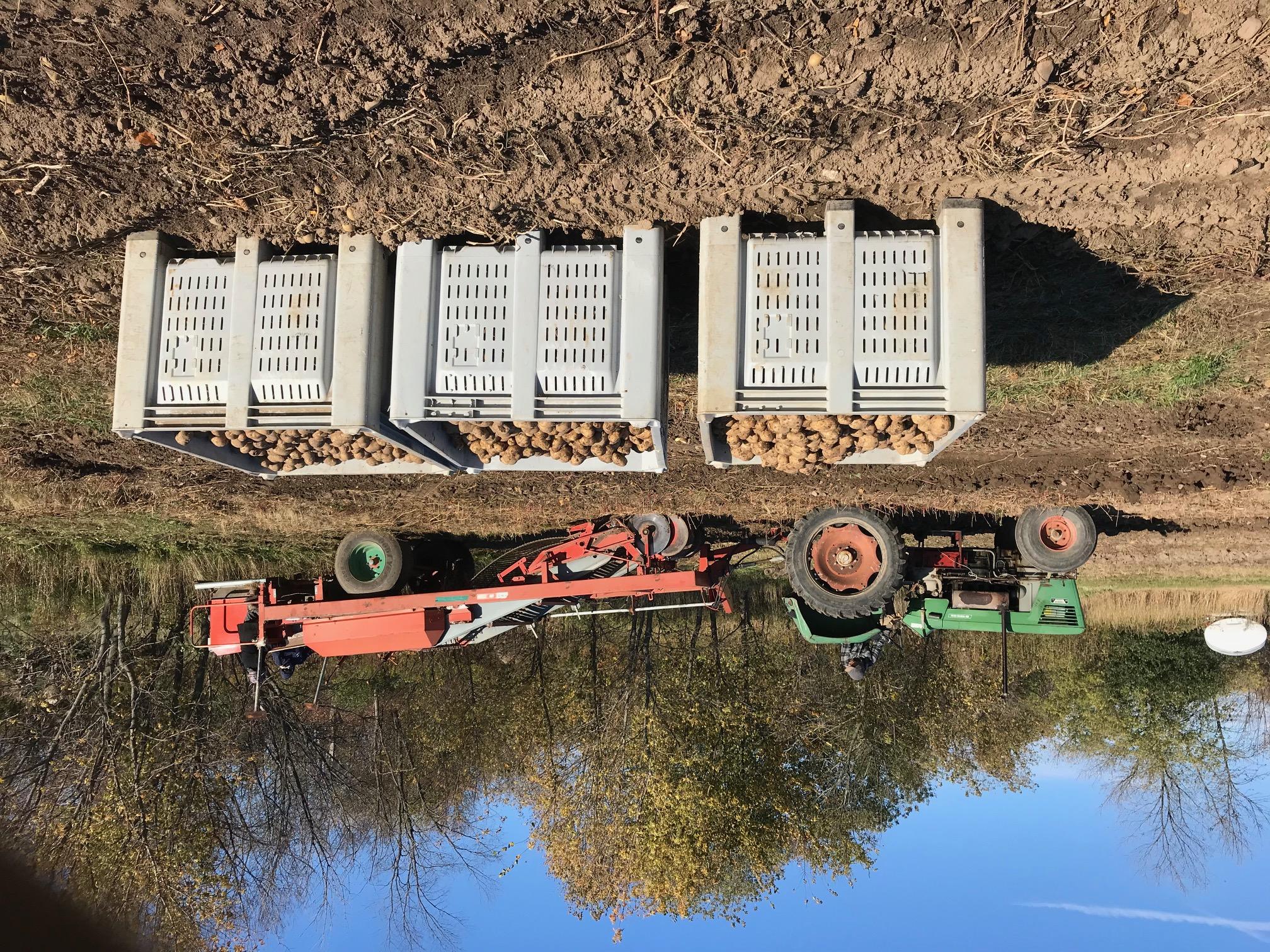 Farm Happenings for October 21, 2020