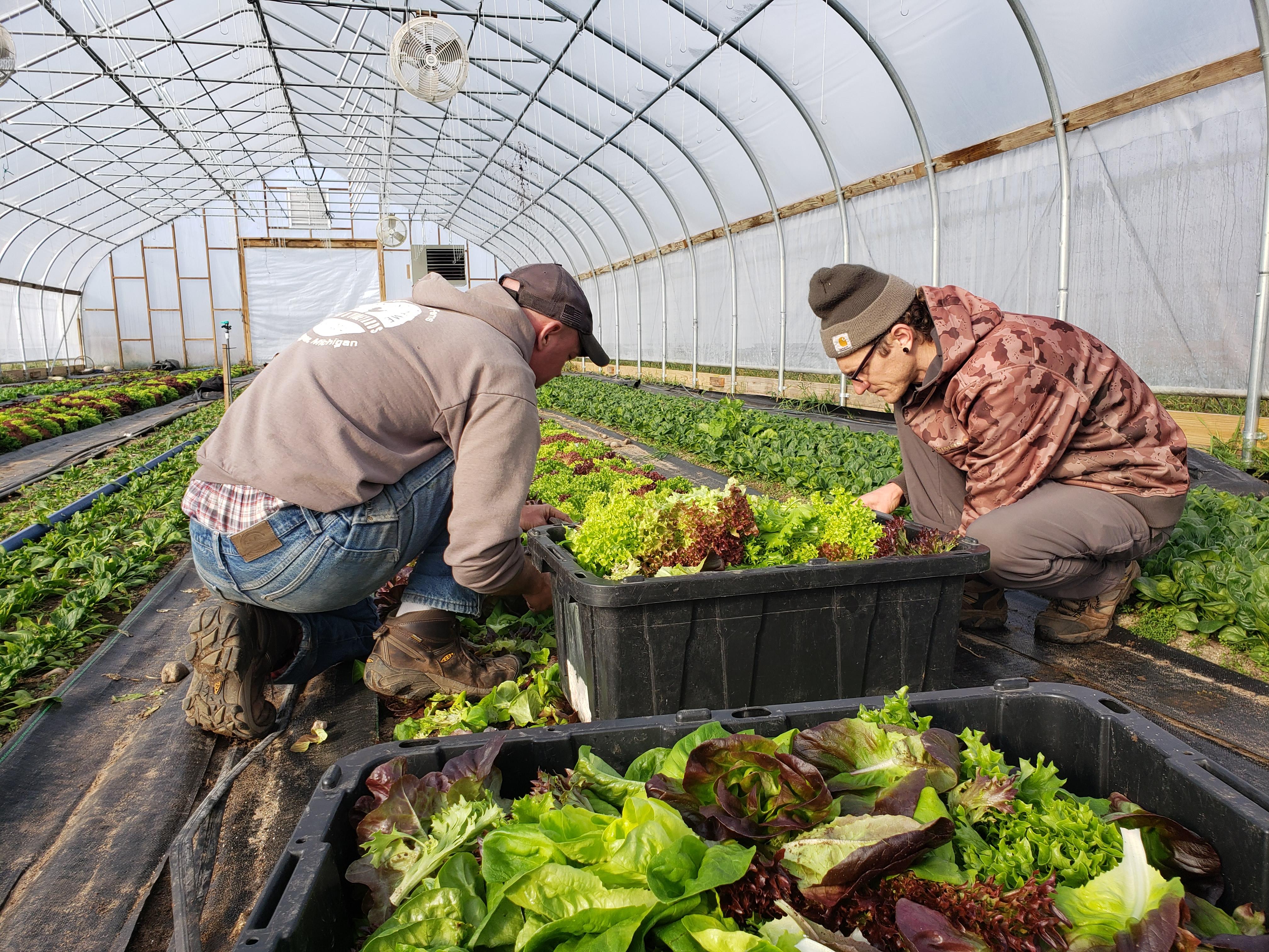 Farm Happenings for November 5, 2020