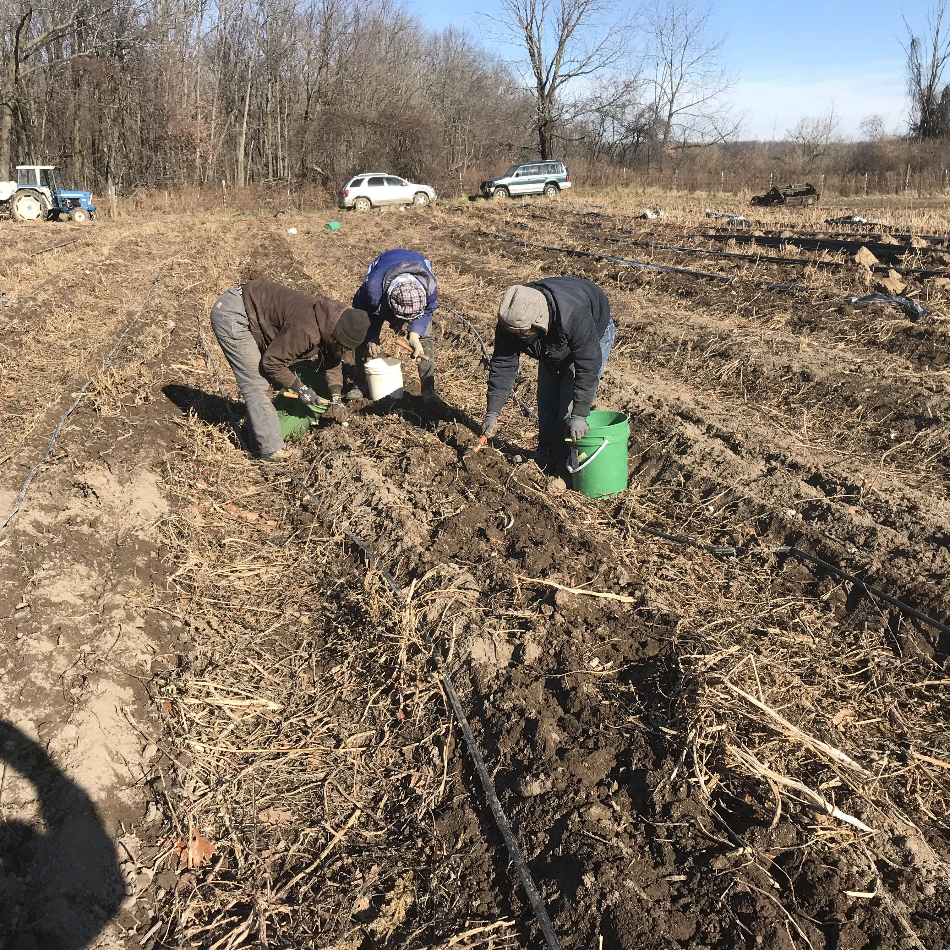Farm Happenings for December 9 and 11, 2020