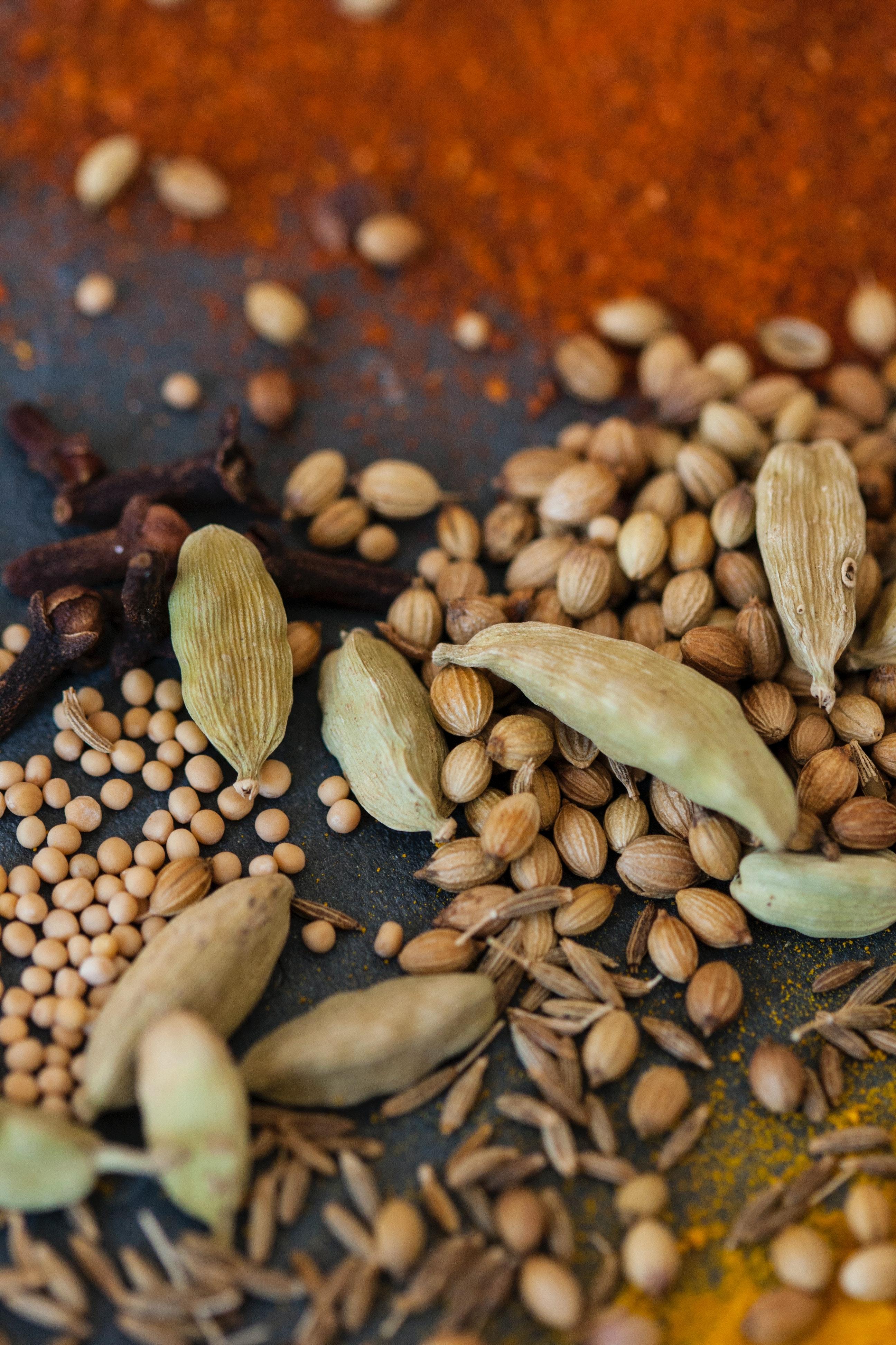 Seeds of Gratitude