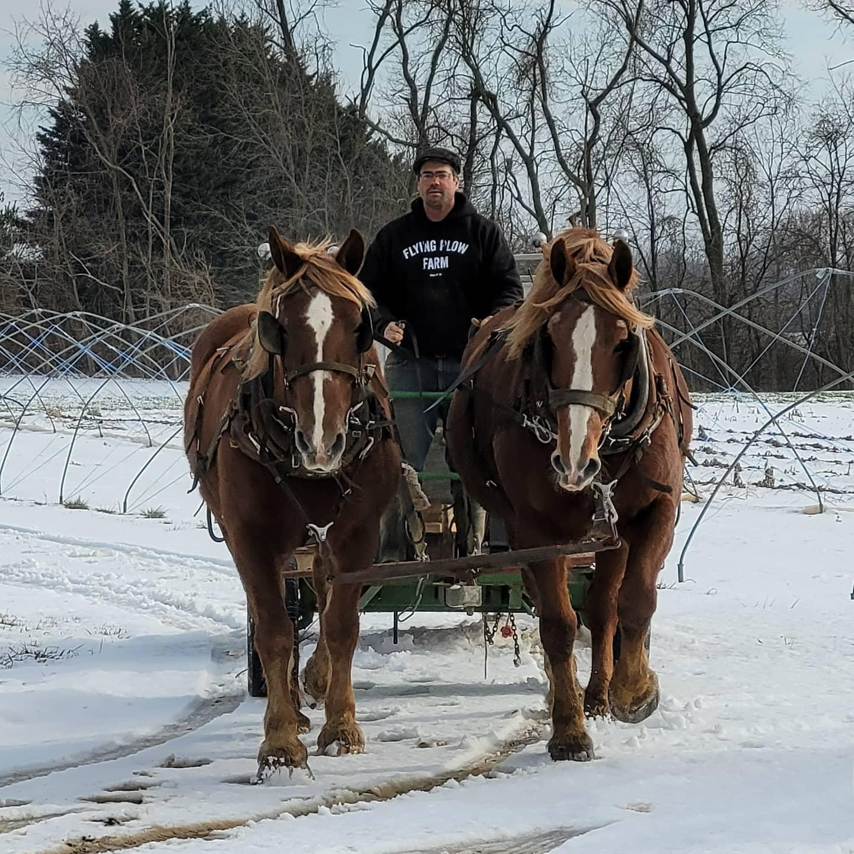 Farm Happenings for Week of February 24, 2021