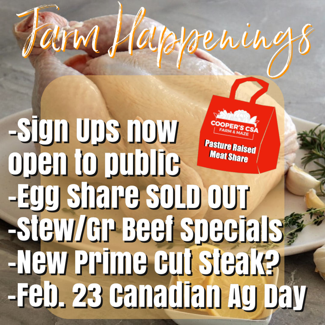 Winter/Spring Meat Share Feb 23rd-27th-Coopers CSA Farm Happenings