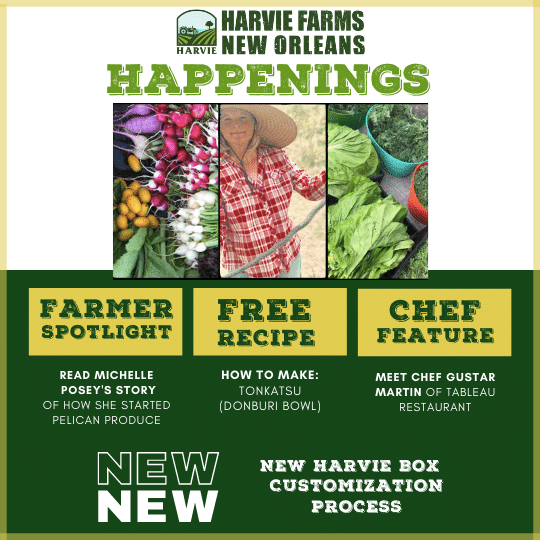 Harvie Farms New Orleans Happenings for the Week of March 1, 2021