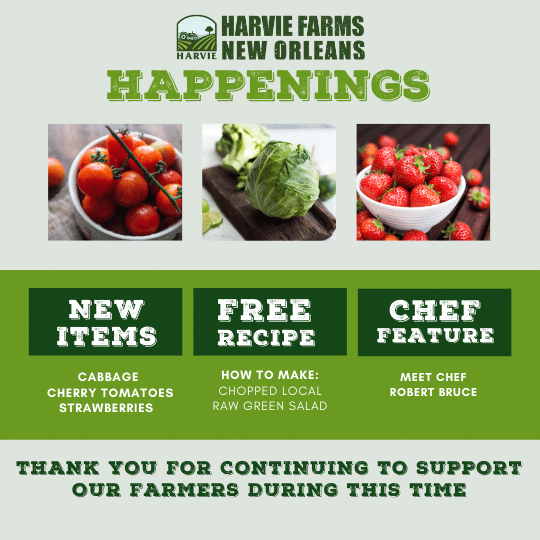 Harvie Farms New Orleans Happenings for the Week of March 8, 2021