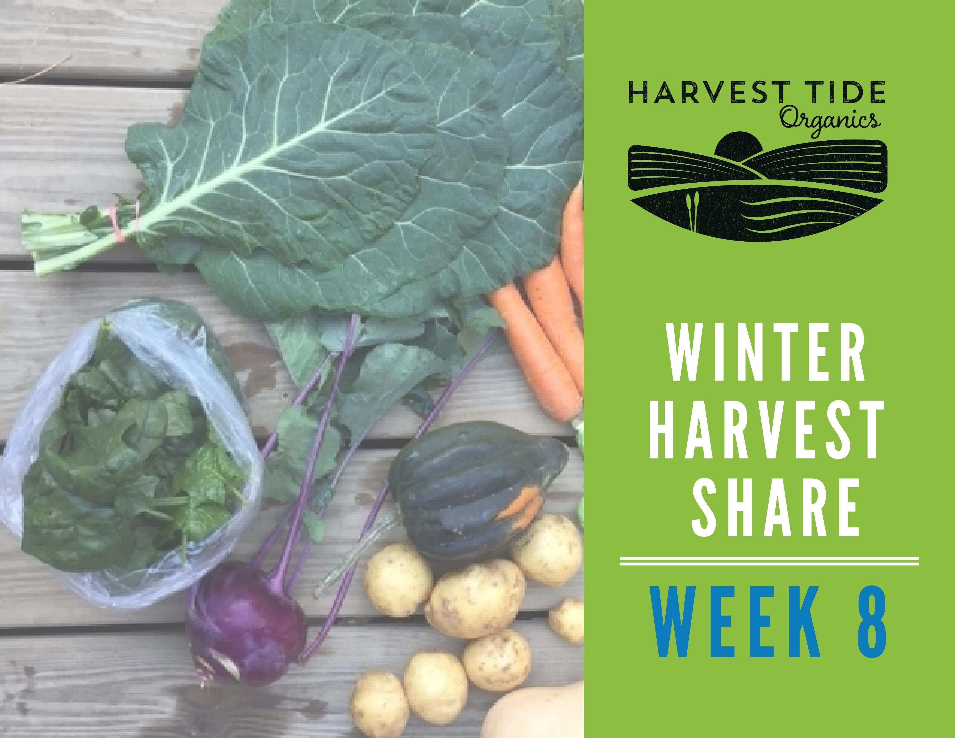 **LAST** Winter Harvest Share - Week 8