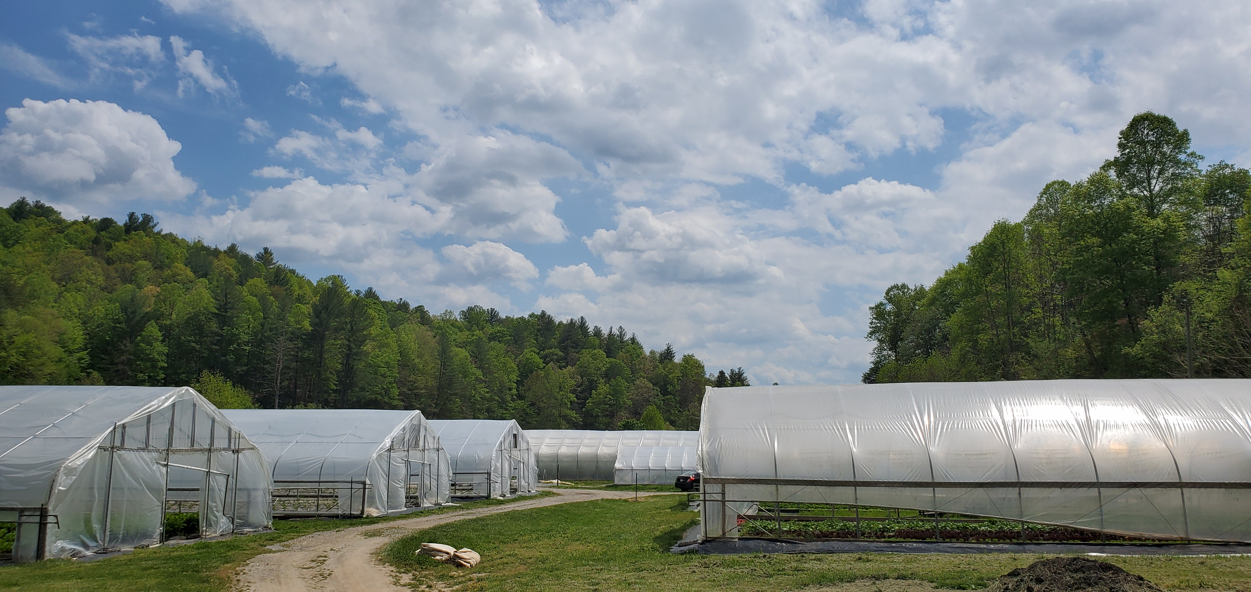 Farm Happenings for May 4, 2021
