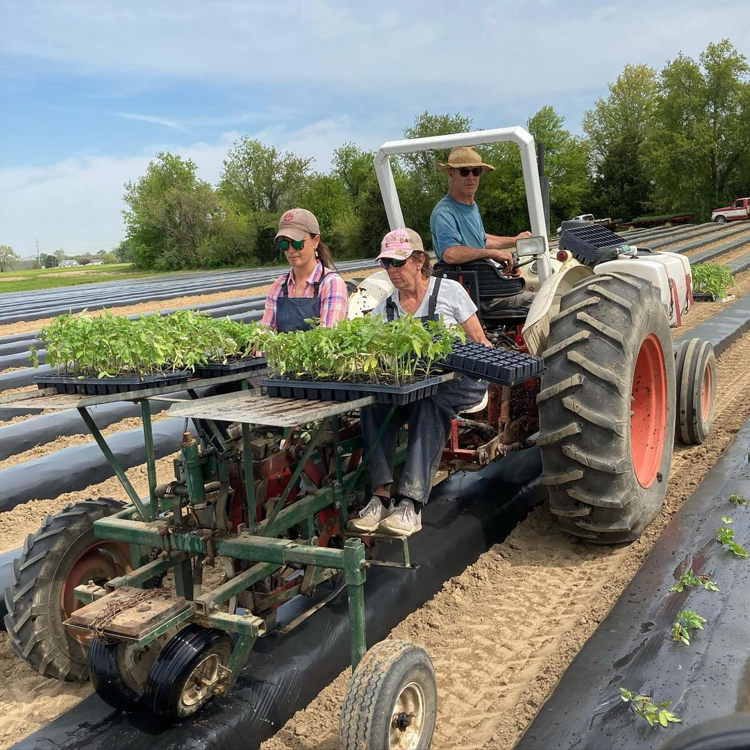 Farm Happenings CSA Week 1 for May 11, 2020